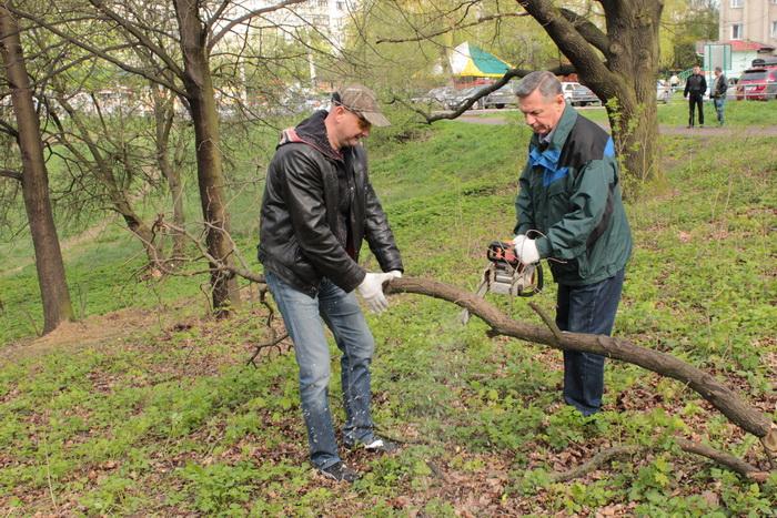 У Луцьку влаштували масове прибирання (ФОТО), фото-30