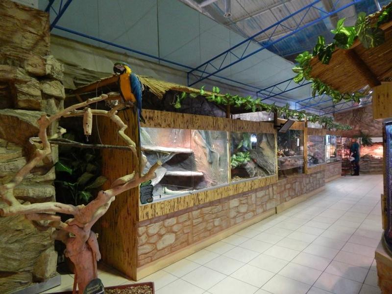 Луцький зоопарк — в Українській Асоціації зоопарків та акваріумів(Фото), фото-6