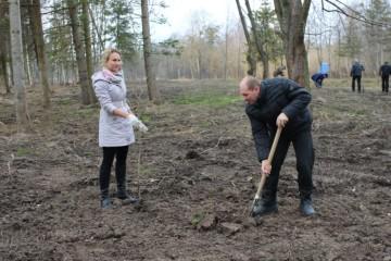 Посадка дерев у центральному парку культури та відпочинку ім. Лесі Українки