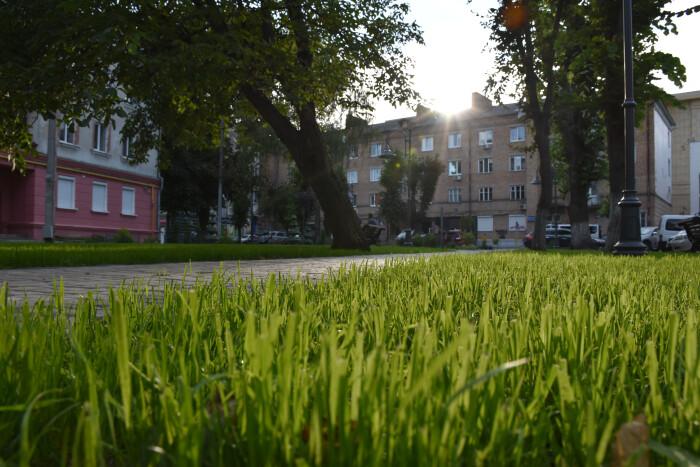Луцьк у 2019-му: парки, сквери та зелені зони міста