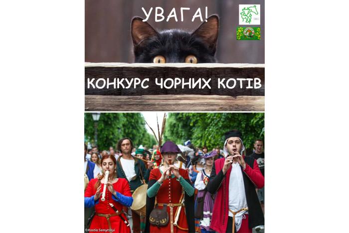 Конкурс-парад чорних котів на фестивалі «Князівський бенкет»
